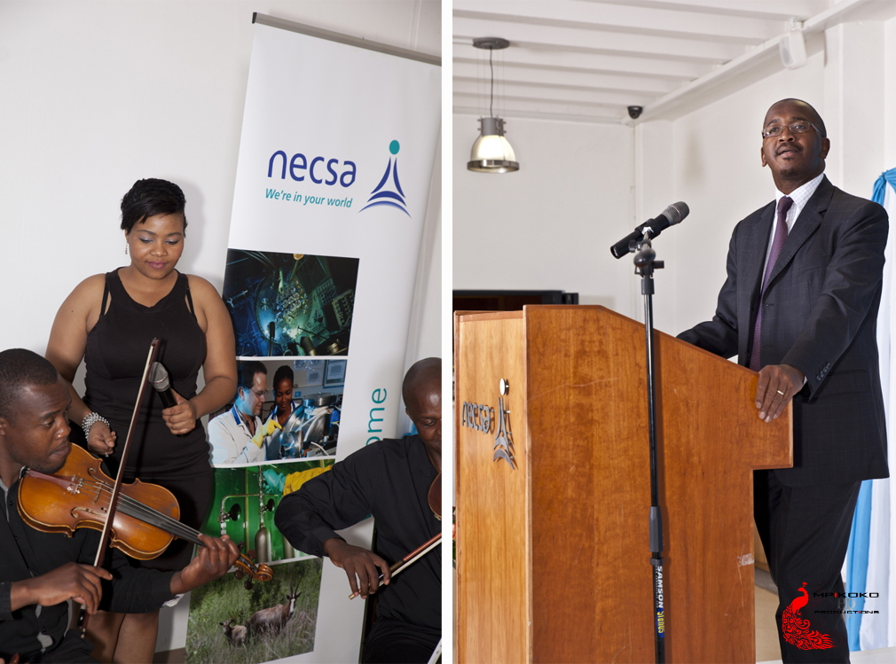 2015 NECSA Long Service Awards